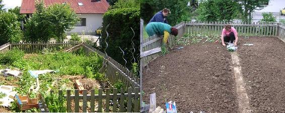 Projektentwicklung - Analyse der Ausgangssituation, Planung, Umsetzung. Verwirklichung neuer Ideen. Links ist ein verwachesner Garten, rechts wird dieser neu bepflanzt.