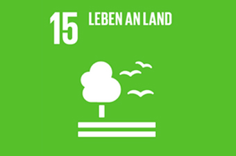 15. Ziel: Leben an Land