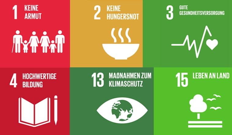 Weitere Ziele der Sustainable Development Goals, di e durch die Arbeit von Brigitte und Hans positive beeinflusst werden: Ziel 1, 2, 3, 4, 13, 15.