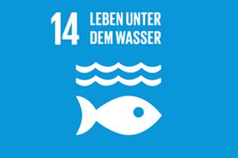 14. Ziel: Leben unter dem Wasser