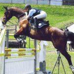 erste Trainingserfolge werden umgesetzt - Johanna und Miranda beim Springturnier 2005