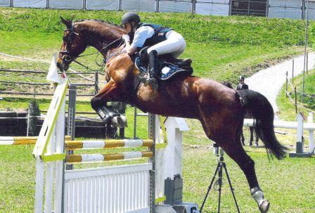 erste Trainingserfolge werden umgesetzt - Johann und Miranda beim Springturnier 2005